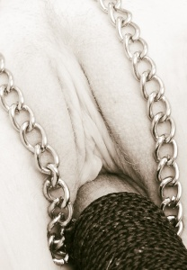Pole and chain.