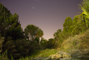 nightscape_1000444