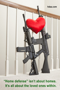 home_defense_3914web-hdaa