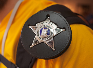 badass_badge_3079