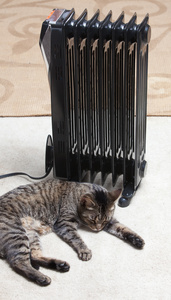 heater_cat_2452web