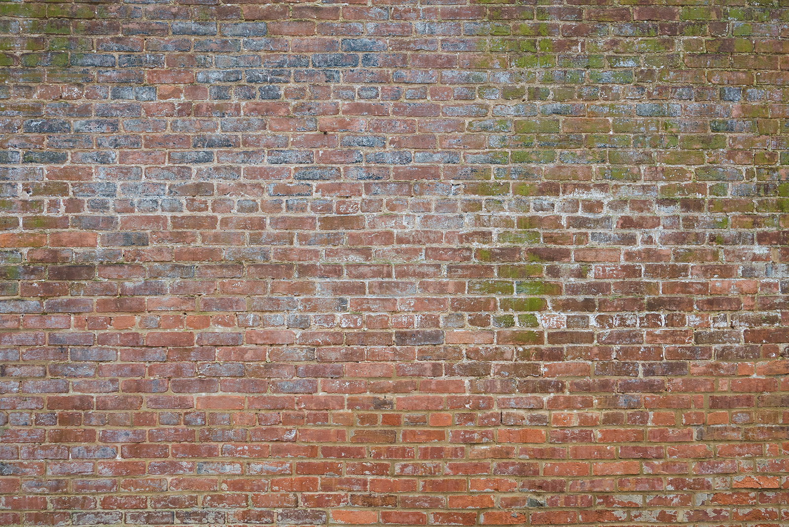 colorful_brick_1030919web