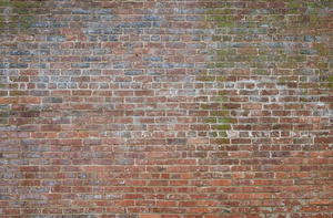 brick_wall_1030919web