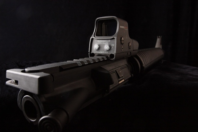 Bushnell Holosight - laser HUD for your EBR