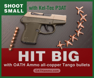 P3AT_OATH_ammo_1704web